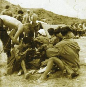 Prisoners being treated humanely at Rockpile near Bong Son by A Co. 2/5 1st Air Cavalry Division, Sept. 1967 (from my personal collection)